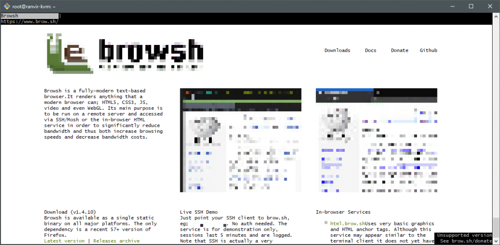 Browsh: Looking at the Browsh homepage